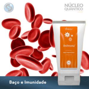 Imunidade natural com Anêmona